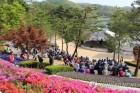 미세먼지 속 상춘인파…충북 유명산·유원지 붐벼