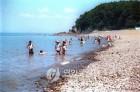 수도권: '바다로 떠나자' 인천 영흥도 해수욕장 개장