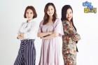 시사교양과 예능의 절묘한 결합…MBC 파일럿 속속 정규화