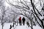 눈꽃 얼음꽃 가득한 동화 속 세상