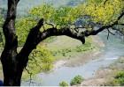 봄 활짝 시인과 함께 걷는 섬진강