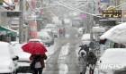 '사흘째 폭설' 전남 10개 시·군 도로 8곳 통제