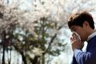 [건강하게 '계절의 여왕' 즐기자] 내 코를 괴롭히는 꽃가루...스테로이드 분무제로 막아주마