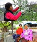 '한국기행' 경남 거창 '45년 단짝' 115세 시어머니와 며느리 이야기