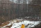 양양군 산림불법 매년 증가에 강력 단속 밝혀