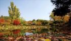 숨겨진 비경과 추억을 찾아…가을로 떠나는 '감성여행'