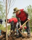 신세계 센트럴시티, 한강에 대규모 녹지 숲 조성한다