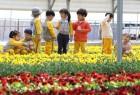 포근한 봄날씨…수도권 미세먼지 '나쁨'