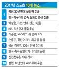 '평창, 30년 만의 聖火' '9년 연속 월드컵 본선行'… 올 최고의 스포츠 뉴스