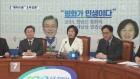 평창올림픽 남북 합의 놓고 정치권 설전 계속