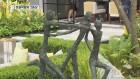 미세먼지 저감 식물로 정원 박람회 2등