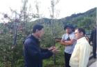 경북농협, 우박 피해 농가 지원