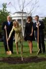 백악관 앞마당에 나무 심는 트럼프·마크롱 부부