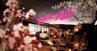 '불타는 청춘' 오늘(20일) 결방… '키스 먼저 할까요' 4회 연속 방송