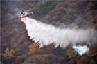 평창 올림픽 기간 '산불방지' 만전…산림청, 인력·장비 대거 확충