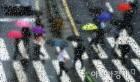 [오늘 날씨] 오후부터 전국에 비…고온 꺾여