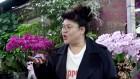 휴게소 다음은 꽃시장이다 '전지적 참견 시점' 이영자의 '식물 미식회'