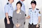 박근혜 선고, 항소하나?
