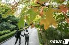 [20일날씨] 무르익는 가을 하늘도 푸르고…제주 풍랑예비특보