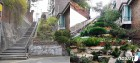 서울시 '꽃·나무 가득' 골목길 공모…최대 1억 지원