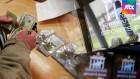 음지에서 양지로…미국 '스포츠 도박·마리화나' 합법화