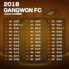 강원FC, 2018시즌 등 번호 발표…'정조국 9번-이근호 11번'
