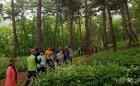 동부산림청, 임산물 재배단지 시범조성 공모