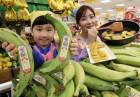 '구워먹고 튀겨먹는 바나나가 있다!'…이마트, 요리용 플랜틴 바나나 '바나밸리 쿠킹' 판매 개시