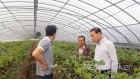 강진군, 새벽 영농 기술지원단 운영