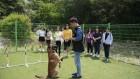 한국예술실용학교 녹번동 야외훈련장에서 진행된 애견훈련 체험학교 화제