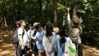 수리초등학교 숲체험 창의적교육과정 운영