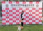 '국제반려동물 문화축제 홍보대사' 걸그룹 리브하이 신아, 국제참평화예술인대상 수상