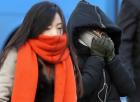 날씨예보 오늘 낮 숨죽인 한파…내일~설연휴 남서풍 '따뜻'