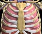 [제주, 제주인의 건강보고서 Ⅶ 건강캘린더] (34)폐암검진 시범사업