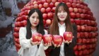 장수 한우랑 사과랑 축제 폐막