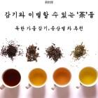 [공감신문 교양공감] 감기와 이별할 수 있는 차들