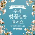 인생샷 남기기 좋은 벚꽃 명소로 봄 여행 떠나세요
