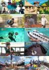 '정글의 법칙' 서은광, 물 공포증으로 임현식 의지 '최고 시청률 14.8'