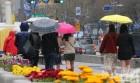 [내일 날씨]전국에 봄비…밤에 대부분 그쳐