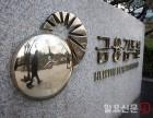 '금융 검찰' 금감원장 낙마의 배후는?