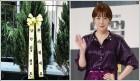 배우 김정은, 이름 앞에 '남한' 붙여야 하는 사연