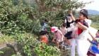 충주, 보리수길 걷기와 열매 따기 체험행사