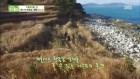 [리뷰] '생방송 투데이' 겨울바다와 해산물…1박 3식 맛있는 여행, 이수도