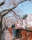 '동상이몽 시즌2' 소이현♥︎인교진 부부, 진해 군항제서 벚꽃 배경삼아 커플사진 '공개'