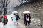 [오늘23일날씨] 미세먼지 걷어내는 봄비, 천둥번개·돌풍 유의