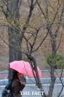 [오늘의 날씨] 전국 흐리고 '봄비' 미세먼지 '보통'