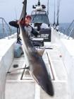 낚시춘추, 대어-사수도에서 2.8m 상어를 낚다
