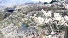 '광양매화축제' 내달 봄꽃 축제 서막 연다