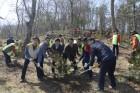동서발전, 제73회 식목일 기념 '탄소상쇄 숲' 조성 나서