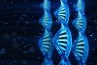 국립암센터-KAIST, 암돌연변이 분석시스템 개발